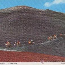 Postales: POSTAL DE LANZAROTE CARAVANA DE CAMELLOS ISLAS CANARIAS. Lote 8025807