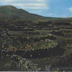 Postales: POSTAL DE LANZAROTE LA GERIA ISLAS CANARIAS. Lote 8026599