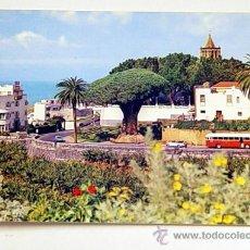 Postales: 2952-ICOD.TENERIFE.DRAGO Y VISTA PARCIAL.NO CIRCULADA.. Lote 15576457