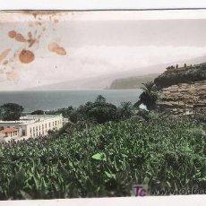 Postales: TENERIFE.PUERTO DE LA CRUZ.COLOREADA A MANO. Lote 16479822