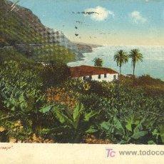 Postales: TARJETA POSTAL DE CANARIAS. PAISAJE. Lote 21578687