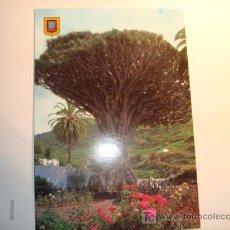 Postales: ICOD DE LOS VINOS, TENERIFE. DRAGO MILENARIO, VISTA PARCIAL. Lote 11644596