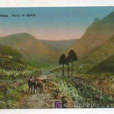 Postales: LAS PALMAS. VALLE DE AGAETE. (ED. RODRIGUES BROS.). Lote 13597452