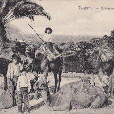 Postales: TRANSPORTE EN CAMELLOS: TENERIFE (CANARIAS) 1909 EN TARJETA POSTAL NOBREGAS ENGLISH BAZAR CIRCULADA.. Lote 25269654