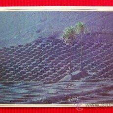 Postales: LA GERIA - LANZAROTE - ISLAS CANARIAS. Lote 15972868