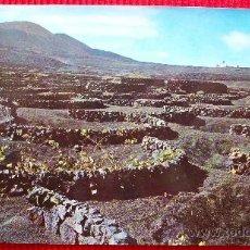 Postales: LA GERIA - LANZAROTE - ISLAS CANARIAS. Lote 15985696