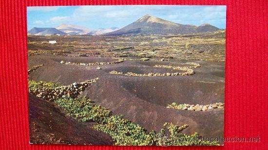 LA GERIA - LANZAROTE - ISLAS CANARIAS (Postales - España - Canarias Moderna (desde 1940))