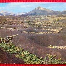 Postales: LA GERIA - LANZAROTE - ISLAS CANARIAS. Lote 15988956