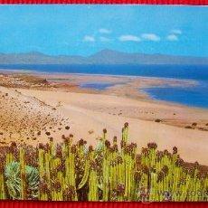 Cartoline: PLAYA DE SOTAVENTO - FUERTEVENTURA - ISLAS CANARIAS. Lote 16209962