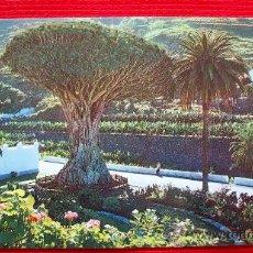 Postales: ICOD DE LOS VINOS - TENERIFE - ISLAS CANARIAS. Lote 16347417