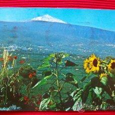 Postales: VALLE DE LA OROTAVA - TENERIFE - ISLAS CANARIAS. Lote 16348454