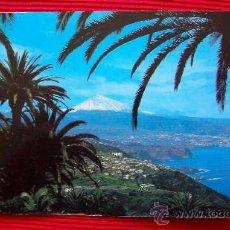 Postales: COSTA NORTE - TENERIFE - ISLAS CANARIAS. Lote 16349475