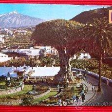 Postales: ICOD DE LOS VINOS - TENERIFE - ISLAS CANARIAS. Lote 16380864