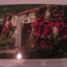 Postales: BONITA POSTAL DE TENERIFE. CANARIAS. SIN USAR. EDICION JOHN WINDE. Lote 16791795