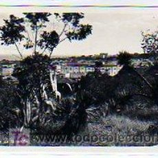 Postales - Tenerife. Canarias. Santa Cruz de Tenerife. Foto Central Otto Auer. Sin circular. - 17606065