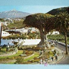 Postales: POSTAL ICOD DE LOS VINOS (TENERIFE). EL DRAGO MILENARIO. ESCUDO DE ORO. Lote 20116427