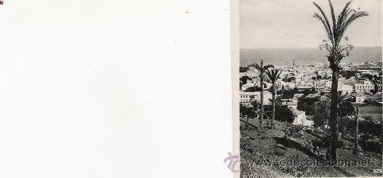 ADEJE - 229 - FOTO-CENTRAL - STA. CRUZ DE TENERIFE - 9.1 X 7 CM. - (Postales - España - Canarias Antigua (hasta 1939))