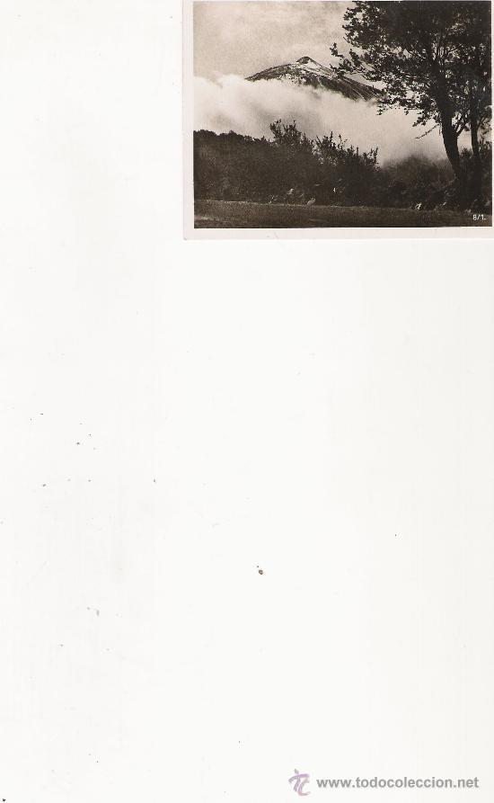 PIC TEIDE - 8/1 - FOTO-CENTRAL - STA. CRUZ DE TENERIFE - 9.1 X 7 CM. - (Postales - España - Canarias Antigua (hasta 1939))