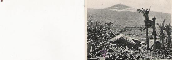 VALLE OROTAVA - 208 - FOTO-CENTRAL - STA. CRUZ DE TENERIFE - 9.1 X 7 CM. - (Postales - España - Canarias Antigua (hasta 1939))