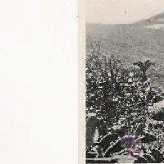 Postales: VALLE OROTAVA - 208 - FOTO-CENTRAL - STA. CRUZ DE TENERIFE - 9.1 X 7 CM. -. Lote 21415730