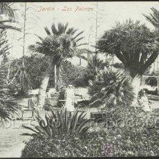 Postales: POSTAL CANARIAS LAS PALMAS JARDIN . RODRIGUES BROS CA 1905.. Lote 27378050