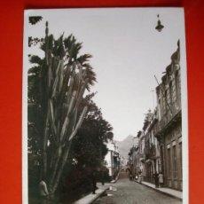 Postales: POSTAL ANTIGUA TENERIFE. CALLE DE SAN FRANCISCO.. Lote 24487592