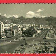 Cartes Postales: SANTA CRUZ DE TENERIFE, ALAMEDA Y AVENIDA DE ANAGA, P43247. Lote 21978415