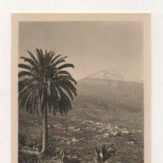 Postales: TENERIFE. VALLE DE LA OROTAVA. (ED. BAENA). POSTAL FOTOGRÁFICA. . Lote 22118700
