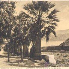 Postales: TENERIFE.-PUERTO DE LA CRUZ-AVENIDA DE AGUILAR Y QUESADA. Lote 22401877