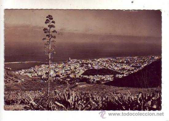SANTA CRUZ DE TENERIFE - VISTA PARCIAL. (Postales - España - Canarias Moderna (desde 1940))