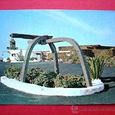 Postales: POSTAL LANZAROTE. LOS JAMEOS DEL AGUA. Lote 23302435