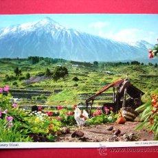 Postales: POSTAL DE TENERIFE - TEIDE. Lote 23302492