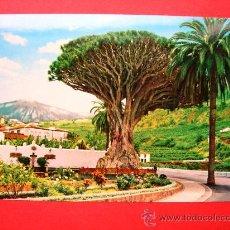 Postales: DRAGO MILENARIO. ICOD DE LOS VINOS. Lote 24256558