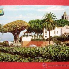 Postales: ICOD DE LOS VINOS. TENERIFE. EL DRAGO MILENARIO. Lote 24256833