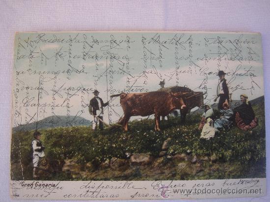 GRAN CANARIA. CIRCULADA, ESCRITA Y CON SELLO DE 10 CTS DE ALFONSO XIII. ENVIADA A CABRA (CÓRDOBA) (Postales - España - Canarias Antigua (hasta 1939))