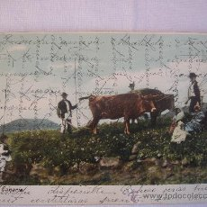 Postales: GRAN CANARIA. CIRCULADA, ESCRITA Y CON SELLO DE 10 CTS DE ALFONSO XIII. ENVIADA A CABRA (CÓRDOBA). Lote 27436453