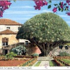 Postales: LA LAGUNA TENERIFE. Lote 24876647