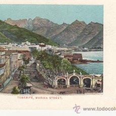 Postales: MARINA STREET.TENERIFE.CANARIAS. SIN DIVIDIR. Lote 27802380