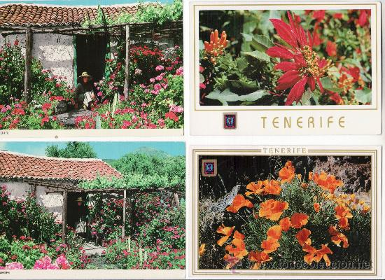 LOTE DE 4 MODERNAS. TENERIFE FLORIDO (Postales - España - Canarias Moderna (desde 1940))