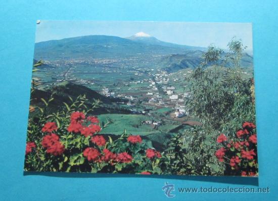 TENERIFE. LAS MERCEDES Y VEGA LAGUNERA (Postales - España - Canarias Moderna (desde 1940))