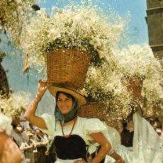 Postales: TENERIFE ROMERIA DE SAN BENITO IN LA LAGUNA ESCRITA SIN CIRCULAR . Lote 29353804