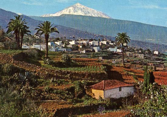 VALLE DE LA OROTAVA Y TEIDE TENERIFE FARDI MOD. 102 NUEVA SIN CIRCULAR (Postales - España - Canarias Moderna (desde 1940))