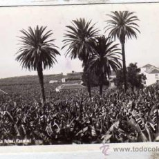 Postais: ISLA DE LA PALMA. CANARIAS. POSTAL FOTOGRAFICA. FTO J. HERRERA. SIN CIRCULAR. 29. Lote 29527115