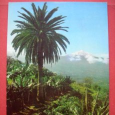 Postales: VALLE DE LA OROTAVA Y TEIDE. TENERIFE. Lote 29915586