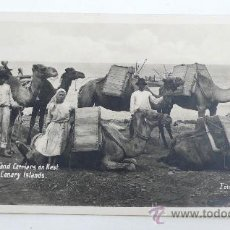 Postales: ISLAS CANARIAS. SAND CARRIERS ON KEST, FOTO: BAENA. POSTAL FOTOGRÁFICA. Lote 30171808