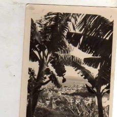 Postales: SANTA CRUZ DE TENERIFE Nº 33 VISTA PARCIAL EDICIONES ARRIBAS ESCRITA CIRCULADA SIN SELLO. Lote 30541491
