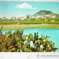 Postales: LAS PALMAS DE GRAN CANARIA,PANORAMICA DE LAS PALMAS Y SUS PLANTACIONES.KRUGER 1162/19.CIRCULADA.. Lote 30974375