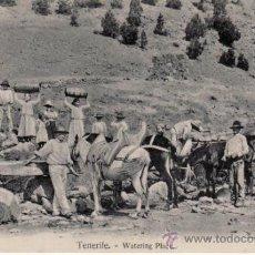Postales: TENERIFE. WATERING PLACE.NOBREGA'S ENGLISH BAZAR. Lote 30998656