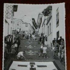 Postales: ANTIGUA FOTOGRAFIA DE ALFOMBRAS DE FLORES DEL CORPUS DE LA OROTAVA TENERIFE, FOTO A. BENITEZ, TENERI. Lote 31360993