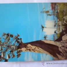 Postales: PUERTO DE LA CRUZ. TENERIFE. EUROAFRICANA DE CANARIAS. . Lote 31411172